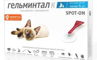 Капли от глистов для кошек на холку: обзор и правила применения