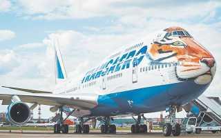 Герой «Полосатого рейса» тигр Пурш был ручным котёноком