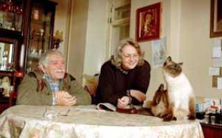 Кошка Армена Джигарханяна: интересные факты о питомце