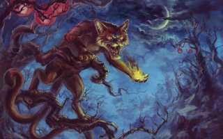 Есть ли у кошек душа: мнение мировых религий и мифологии, отклик в народных приметах и суеверии