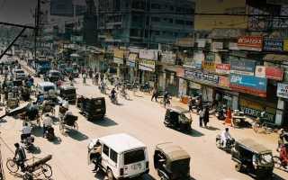 В Индии слон напал на автомобиль с туристами