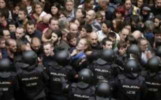 Власти Барселоны борются с дикими кабанами в центре города