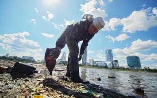 Защитники природы призывают не оставлять мусор на пляжах, поскольку им могут питаться птицы