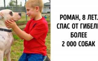 История маленького мальчика, который совершает не по годам взрослые поступки
