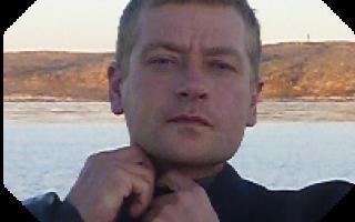 В Калининграде выпустили двух балтийских тюленей