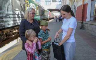 День тигра во Владивостоке собрал более 15 тысяч человек