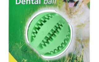 Какие игрушки для кошек и собак можно купить на алиэкспресс