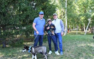 В парке 850-летия Москвы прошло благотворительная акция в поддержку бездомных животных