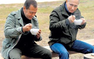 Владивостокские яхтсмены и рыбаки приютили слепую чайку Машу