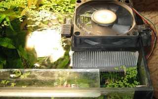 Как охладить воду в аквариуме — самые эффективные способы охлаждения