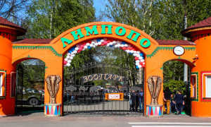 Золотая осень в зоопарке Лимпопо