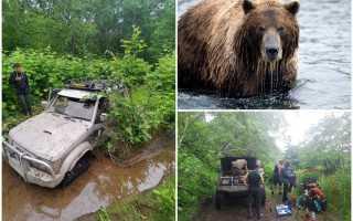 На Камчатке медведь испугал спящих мужчин