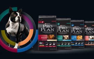 Корм для собак Pro Plan от Purina: Готовое питание премиум-класса