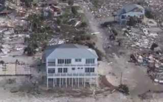 Дитя бури: в США во время урагана «Майкл» родился дикобраз