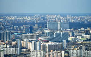 Ластоногим строят дом в Москве