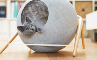 Домик для кошки своими руками – из поролона, коробок, мягкие и другие проекты, пошаговая инструкция по изготовлению, размеры и чертежи