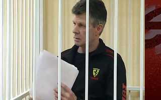 Битва за Ваську: суд решит спор между хозяйкой кота и приютом
