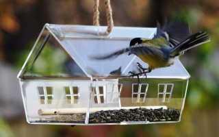 Оригинальные кормушки для птиц – подборка фото
